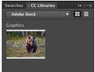 AdobeStock-CC-library